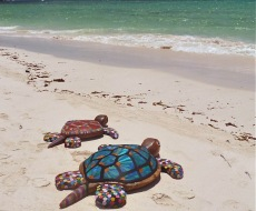 Flip flop turtles commissioned for an International Marine debris conference