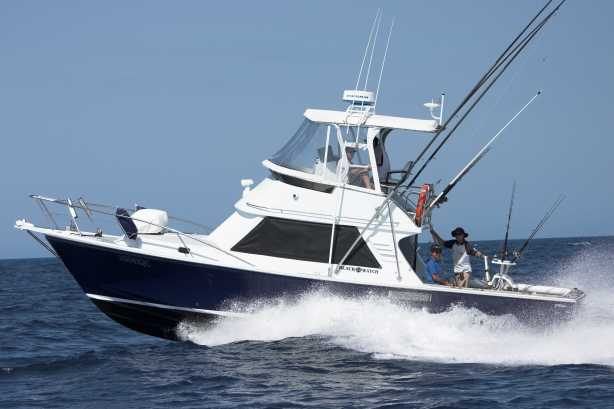Watamu marine association website for Boat fishing games