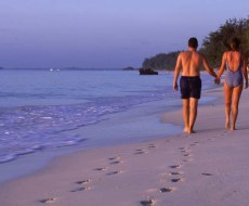 Walk at dawn on the pristine beaches
