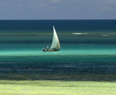 Traditional fishing dhow in Watamu Marine Park