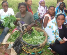 The members prepared home grown vegetables for sale