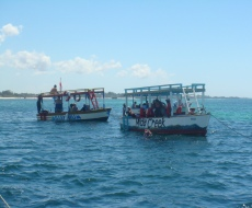 Eco tour trips searching for dolphin pods in the Watamu Reserve