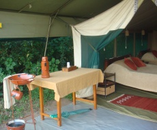 Luxury tent in the Mara
